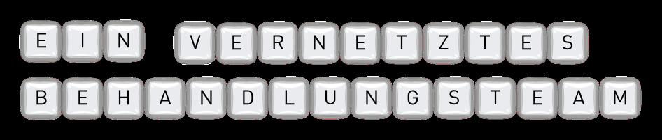 Ein_vernetzes_Behandlungsteam_EV_Header